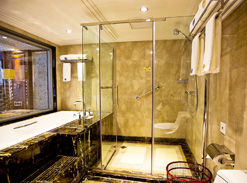 Presidential Suite's Bathroom on President Cruises