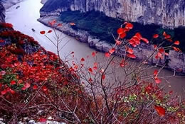 Beautiful Landscape of Wu Gorge