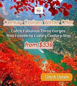 Win a Century Cruises for Free